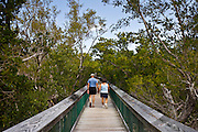 Tourists on boardwalk in the Everglades, Florida, United States of America