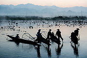 Myanmar, Shan state, Inle lake, fishermen fishing by traditional fishing techniques at dusk
