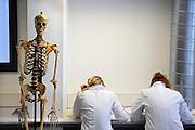 Nederland, Nijmegen, 1-3-2010Studenten medicijnen zijn in de snijzaal van anatomie bezig met een practicum.Foto: Flip Franssen/Hollandse Hoogte