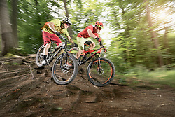 Two mountainbikers riding over roots in a forest, Bavaria, Germany