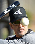 GLENDALE, ARIZONA - FEBRUARY 20:  Instructor Omar Vizquel of the Chicago White Sox hits fungoes during a spring training workout February 20, 2018 at Camelback Ranch in Glendale Arizona.  (Photo by Ron Vesely)  Subject:   Omar Vizquel