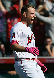 May 13, 2018 - Anaheim, CA, U.S. - ANAHEIM, CA - MAY 13: Los Angeles Angels of Anaheim infielder Zack Cozart (7) reacts after hitting a game winning single in the bottom of the ninth inning for an Angels 2 to 1 victory over the Minnesota Twins in a game played on May 13, 2018 at Angel Stadium of Anaheim in Anaheim, CA. (Photo by John Cordes/Icon Sportswire) (Credit Image: © John Cordes/Icon SMI via ZUMA Press)