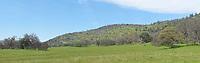Green field and hill. (52187 x 16499 pixels)