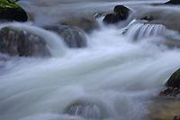 Mountain stream Bicaz, Cheile Bicazului-Hasmas National Park, Carpathians, Transylvania, Romania,