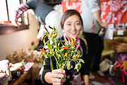 Yahei chilies are an indigenous pepper grown only in the Shiga prefecture of Japan.