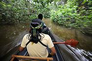 Paddling in the rainforest, Ecuador.