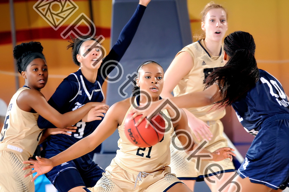 2016 February 20 - FIU's Destini Feagin (21). <br /> Florida International University fell to Rice, 62-68, at FIU Arena, Miami, Florida. (Photo by: Alex J. Hernandez / photobokeh.com) This image is copyright by PhotoBokeh.com and may not be reproduced or retransmitted without express written consent of PhotoBokeh.com. ©2016 PhotoBokeh.com - All Rights Reserved