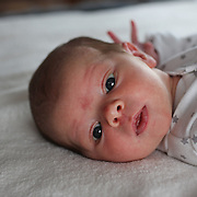 A newborn baby girl looks around at her new environment soon after birth. Photo Tim Clayton
