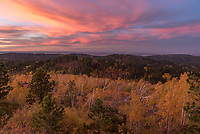 It was a very colorful sunset above the fall foliage on Cement Ridge in the Black Hills. The birch trees were knocked over by a tornado in June of 2018.