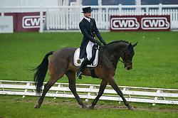 Quoidbach Roland (BEL) - Farco du Petit Pré Ewalco<br /> FEI World Championship for Young Horses Le Lion d'Angers 2012<br /> © Hippo Foto - Jon Stroud