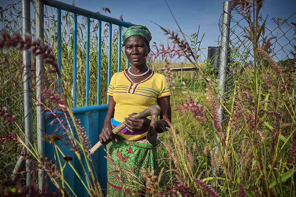 29/10/2019 / Kpatua / Ghana:<br /> Cecilia stands in the field where she farms vegetables with other women in Kpatua during the dry season, thanks to the <br /> solar powered water pump donated by Oxfam.