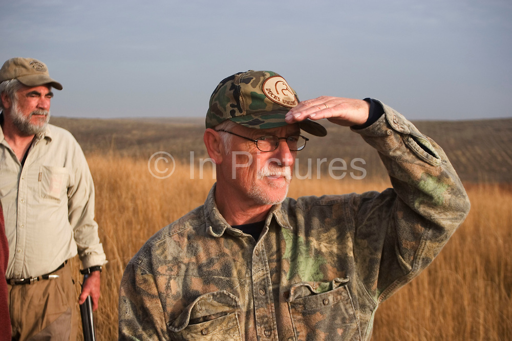 Hunters John Davidson and Timmy Stein (r) assess the land while upland game bird hunting near Minot, North Dakota. Both hunters work the land to find pheasant and grouse (also known as 'chickens'). These men have been shooting for most of their lives and put considerable efforts into their hunting, efforts which reward them with wild game meats, none of which is wasted.