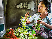 26 OCTOBER 2015 - YANGON, MYANMAR: A woman sorts herbs she sells on the Yangon Circular Train. The Yangon Circular Railway is the local commuter rail network that serves the Yangon metropolitan area. Operated by Myanmar Railways, the 45.9-kilometre (28.5mi) 39-station loop system connects satellite towns and suburban areas to the city. The railway has about 200 coaches, runs 20 times daily and sells 100,000 to 150,000 tickets daily. The loop, which takes about three hours to complete, is a popular for tourists to see a cross section of life in Yangon. The trains run from 3:45 am to 10:15 pm daily. The cost of a ticket for a distance of 15 miles is ten kyats (~nine US cents), and for over 15 miles is twenty kyats (~18 US cents).     PHOTO BY JACK KURTZ
