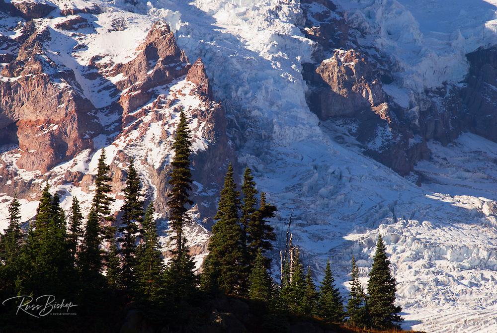 Nisqually Glacier detail from Glacier Vista, Mount Rainier National Park, Washington USA