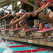 01/22/2016 - Women's Swimming & Diving