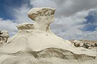 Alien head sandstone formation, Bisti Badlands, Bisti/De-Na-Zin Wilderness, New Mexico