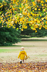 ©Licensed to London News Pictures 17/08/2020             Greenwich, UK. A young child walking on colourful leaves. Between the heavy rain and thunderstorms the sunshine comes out showing off the early autumnal leaves on the ground in Greenwich park, Greenwich, London. Photo credit: Grant Falvey/LNP
