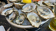 Willi's Seafood & Raw Bar,Healdsburg,California