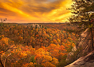 The sky and forest mirror the other with explosions of vibrant yellows and oranges on a crisp autumn evening overlooking half moon rock within the Red River Gorge of Kentucky.
