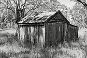 dilapidated  bush hut in a clearing of trees  and high grass near Balmoral, Victoria, Australia. <br /> <br /> Editions:- Open Edition Print / Stock Image