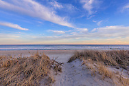 Path to Beach Through Dunes,  Dune Rd, Water Mill, NY