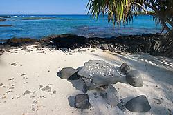 "Kanane, an old Hawaiin ""checker"" game on stone table, Pu`uhonua o Honaunau or Place of Refuge National Historical Park, Honaunau, Big Island, Hawaii"