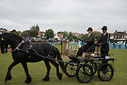 Carriage-driving, Bexhill Horse show. Polegrove, Bexhill on Sea. 29 May 2016
