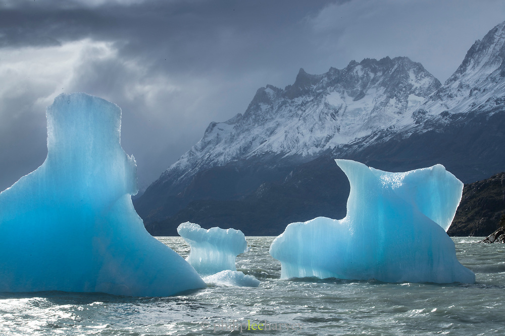 Icebergs on lake and mountains on winter day, Lago Grey, Torres del Paine National Park, Chile