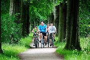 In Soest rijdt een gezin op de fiets door de bossen.<br /> <br /> In Soest a family is cycling in the forest.