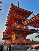 2018 Oct 10-Nov8: JAPAN all