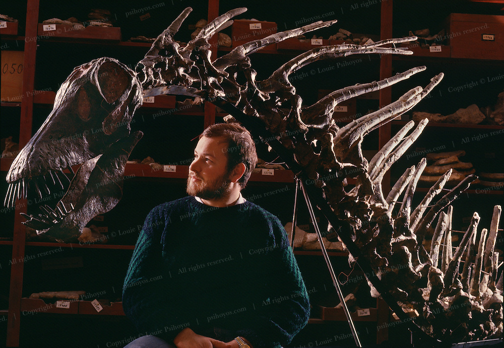 """Amargasaurus, a """"jibbed"""" sauropod from the Argentina at the Museo de Ciencias Naturales de Buenos Aires was discovered by paleontologist, Guillermo Rougier."""