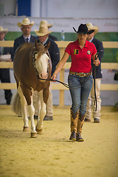 Cira Baeck, (BEL), Colonels Shining Gun - Horse Inspection Reining  - Alltech FEI World Equestrian Games™ 2014 - Normandy, France.<br /> © Hippo Foto Team - Dirk Caremans<br /> 25/06/14