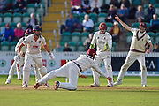 James Hildreth of Somerset dives and fails to catch Alastair Cook of Essex during the Specsavers County Champ Div 1 match between Somerset County Cricket Club and Essex County Cricket Club at the Cooper Associates County Ground, Taunton, United Kingdom on 26 September 2019.