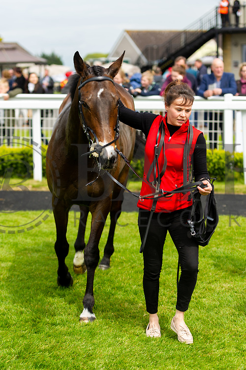Gendarme ridden by Rossa Ryan and trained by Aleandra Dunn in the Empire Fighting Chance Handicap race.  - Ryan Hiscott/JMP - 06/05/2019 - PR - Bath Racecourse- Bath, England - Kids Takeover Day - Monday 6th April 2019