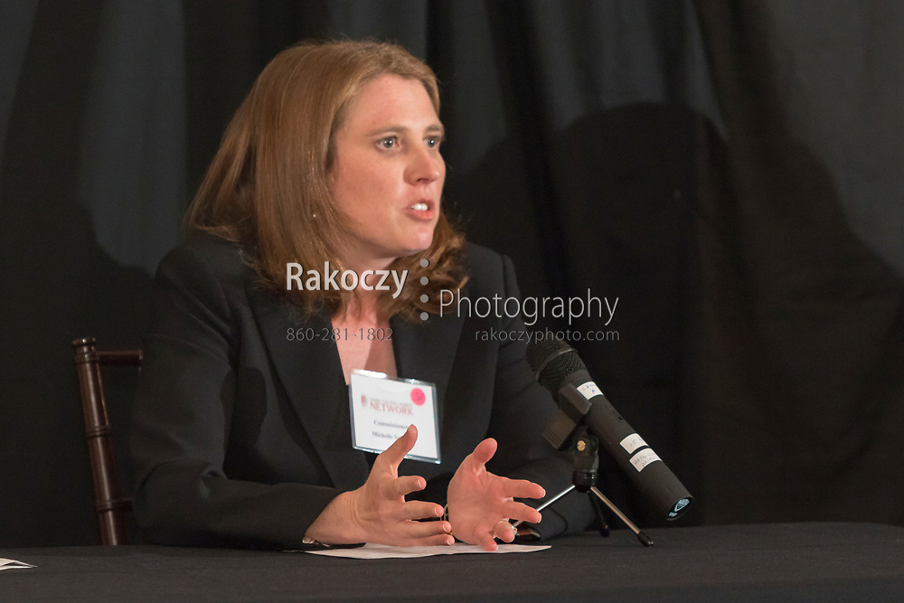 Commissioner Michelle Seagull, DCP, speaks on a panel discussion on The Future of Healthcare presented by the Senior Executive Women's Network (SEWN), held at The North House in Avon, CT.