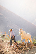 Farmer and his horse walking on mountains, Elqui Valley, Chile