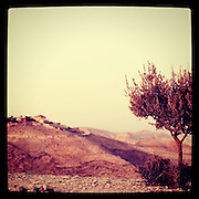 Judean desert, Israel. September 19th 2011....