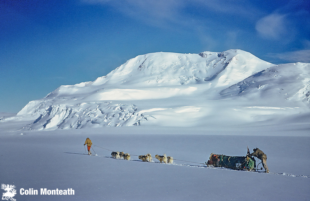 NZARP dog team descends Axel Heiberg Glacier, Vic McGregor out front, Wally Herbert behind, under Mt Don Pedro Chistopherson, 3775 m, February 1962