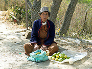 Bhutanese subsistence farmer, Kinley sells guava and amla fruit on the roadside in Bajo town, Wangdue Phodrang, Bhutan.