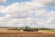 Photo Randy Vanderveen<br /> Grande Prairie, Alberta<br />  2020-08-26<br /> Barry Miles swaths down an oats crop in a field east of Kleskun Hills Wednesday August 26. The swather header on the front of the tractor is something Miles designed in the winter of 2018-19. The tractor mounted swather proved handy last fall in muddy fields.