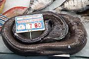 Moray eel on sale in fishmongers at Playa Blanca, Lanzarote, Canary Islands, Spain