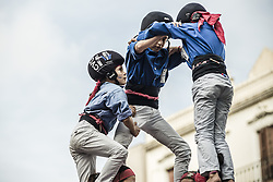 November 20, 2016 - Barcelona, Catalonia, Spain - A young member of the 'Castellers de la Vila de Gracia' climbs to the top of one of their human towers during a 'diada castellera' at Barcelona's Gracia quarter (Credit Image: © Matthias Oesterle via ZUMA Wire)