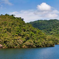 """""""Floresta e Lagoa (paisagem) fotografado em Cariacica, Espírito Santo -  Sudeste do Brasil. Bioma Mata Atlântica. Registro feito em 2012.<br /> <br /> <br /> <br /> ENGLISH: Forest e Lagoon photographed in the city of Cariacica, Espírito Santo - Southeast of Brazil. Atlantic Forest Biome. Picture made in 2012."""""""