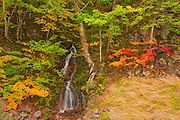 Little waterfall and Acadian forest in autumn foliage<br />Cape North<br />Nova Scotia<br />Canada