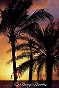 sunset at Princess Beach, Curacao, Netherlands Antilles,<br /> ( Caribbean Sea )