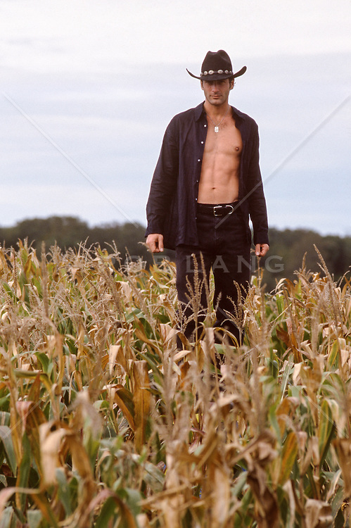 cowboy with an open shirt in a corn field