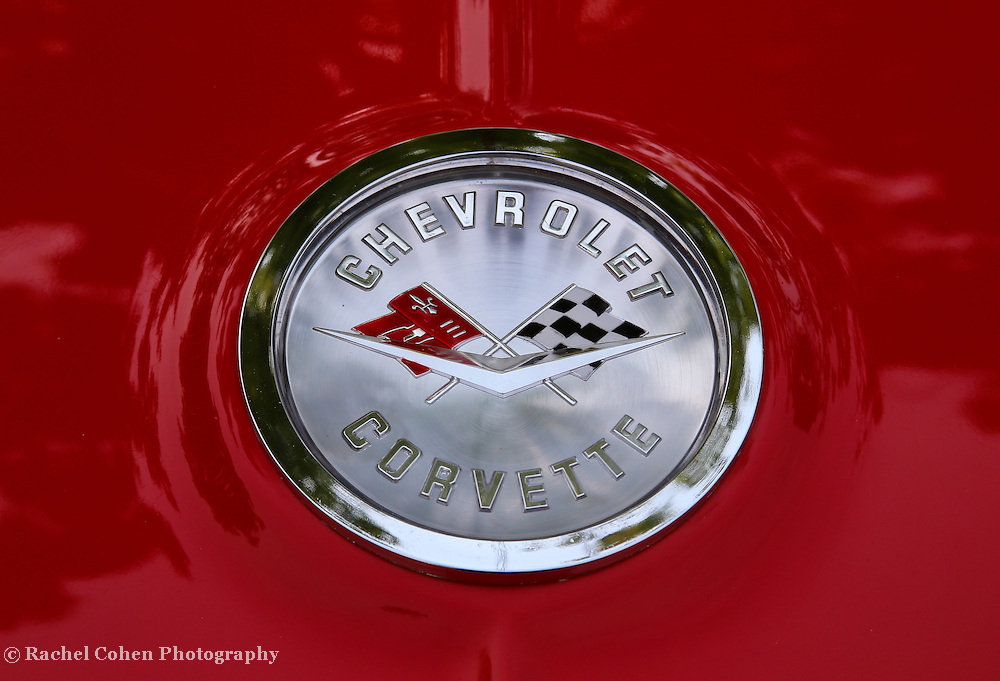 """61 Chevy Corvette""<br /> <br /> The beautiful 1961 Chevrolet Corvette rear logo!!<br /> <br /> Cars and their Details by Rachel Cohen"