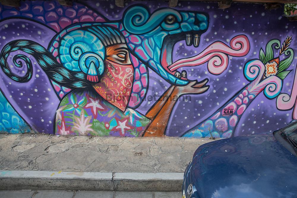 San Cristóbal de las Casas, Mexico - 05.01.2019<br /> <br /> Street art in the city of San Cristóbal de las Casas in Chiapas, Mexico. <br /> <br /> Streetart in der in Chiapas gelegenen Stadt San Cristóbal de las Casas. <br /> <br /> Photo: Bjoern Kietzmann