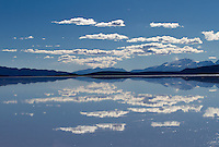 Lago Coipasa or Salar de Coipasa is a lake in Atahuallpa Province, Oruro Department, Bolivia. At an elevation of 3657 m, its surface area is 806 km². It's on the western part of Altiplano, 20 km north of Salar de Uyuni and south of the main road linking Oruro and Huara (Chile).<br /> <br /> Coipasa Lake is a tectonic saline lake with a depth of 3.5 metres that is surrounded by the Coipasa salt flats (Salar de Coipasa)