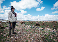 MERZOUGA, MOROCCO - CIRCA MAY 2018: Shepherd in the countryside of Morocco